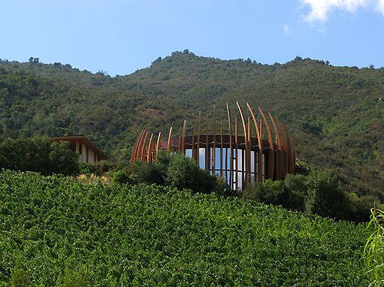 Clos Apalta Winery....Chile