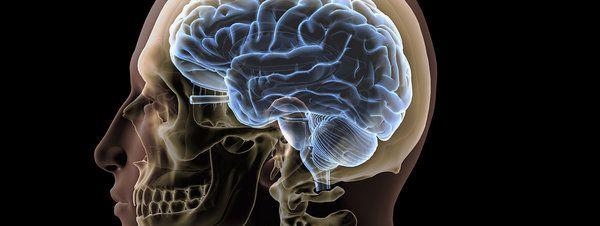 'Human Brain Project': 1.000 millones de inversión y 150 laboratorios para entender el cerebro