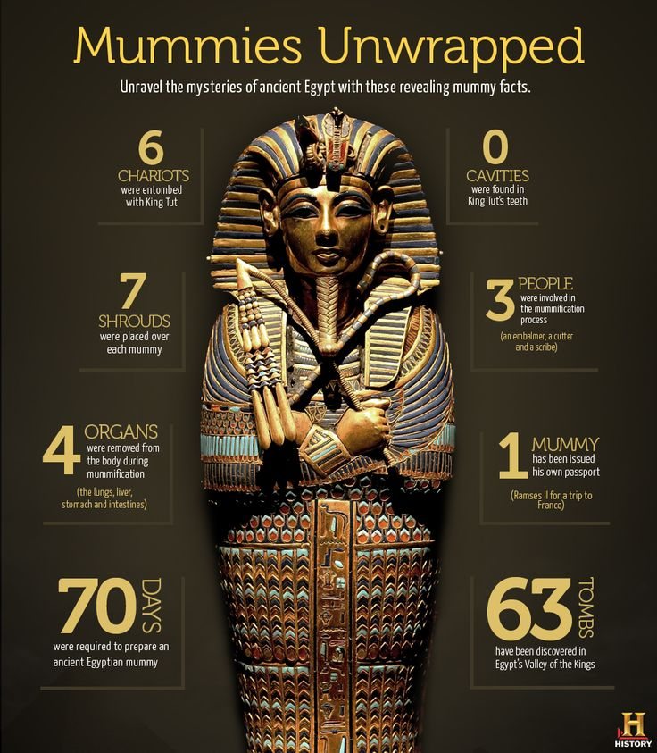 Mummies Facts — History.com Interactive Games, Maps and Timelines