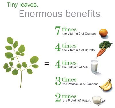 Moringa oleifera  Leaves (Indian name Drumstick leaves) Benefits