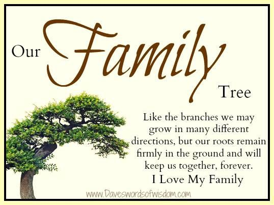 Like Branches On A Tree Quote: Family Tree Quotes Or Poems. QuotesGram