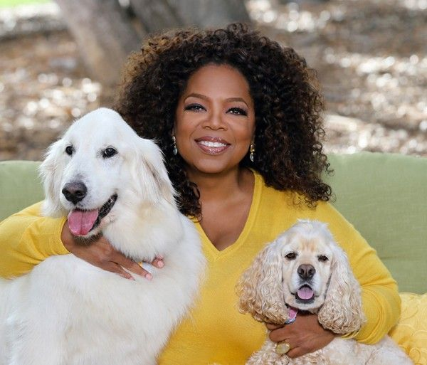 Oprah is the CEO and Chief Creative Officer of OWN, The Oprah Winfrey Network; Oprah.com; O, The Oprah Magazine; and Harpo Films.