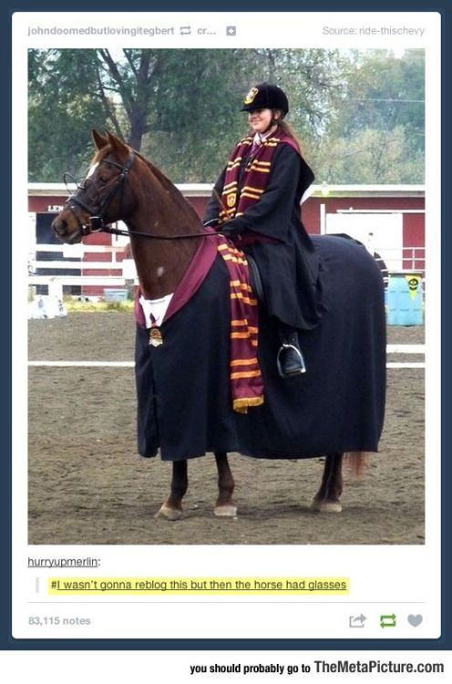 Harry Potter costume