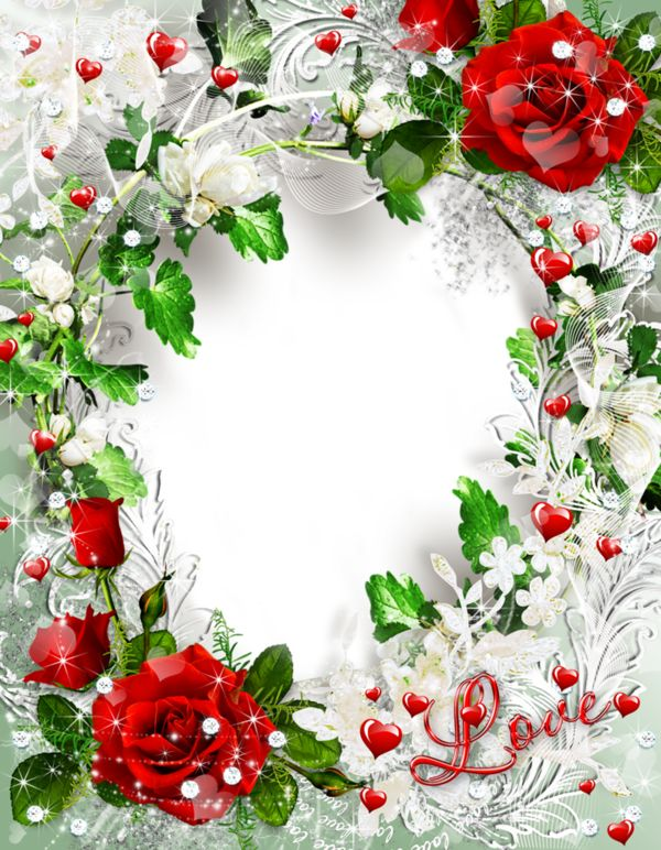Beautiful Transparent Rose Photo Frame Love