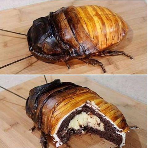 Madagascar Hissing Cockroach Cake Recipe