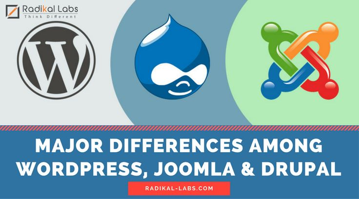 WordPress, Joomla and Drupla are all CMS (Content Management System) applications. These applications are mainly used to build websites and develop blogs.  Wordpress Vs Joomla Vs Drupal: Which CMS To Choose For Your Website? Read on to Know more: http://bit.ly/2pXWwPN