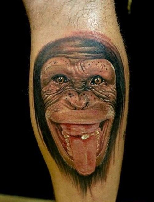 Wonderful realistic chimpanzee showing a tongue tattoo on arm ...