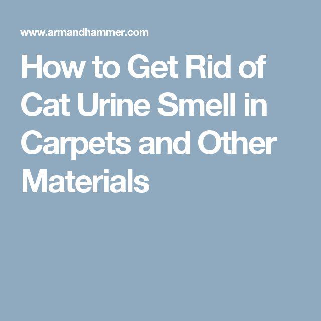 Best 20 Cat Urine Smells Ideas On Pinterest Dog Urine Remover Cat Urine Remover And Cleaning