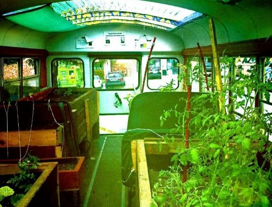 Good Former School Bus Converted Into a Thriving Mobile Urban Garden