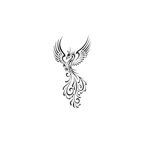 Black and white phoenix tattoos Free Download HD