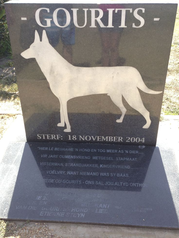 The Gouritsmond tribute that my grandmother had orginanised to be put up at the community hall to honor one of Gourits' canine celebraties. This dog would wonder through the whole town, saying hello to everyone, playing with us kids and of course getting all his meals as he went. He was cleverly named after the town itself.