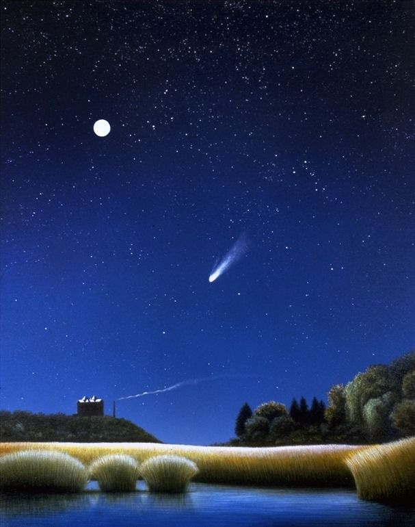 "Saatchi Online Artist: Edward Joseph; Acrylic, Painting ""Comet"""