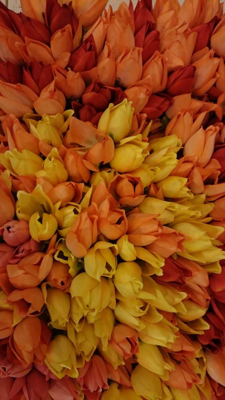 Tulpenpracht | VIA CANNELLA WOONWINKEL | CUIJK