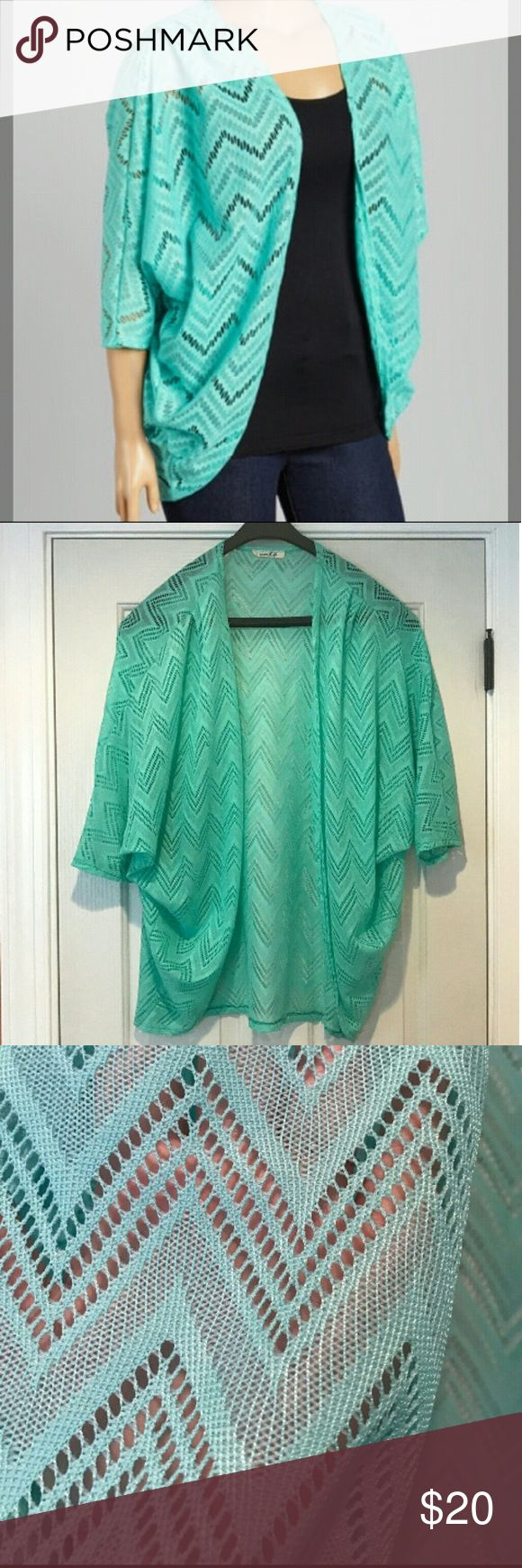 TEMP PRICE DROP Mint Chevron Cardigan Mint Chevron Cardigan Sweaters