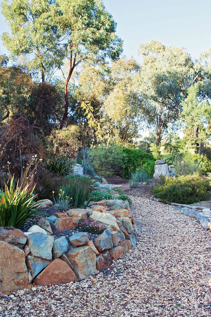 1210 best images about australian native gardens on pinterest