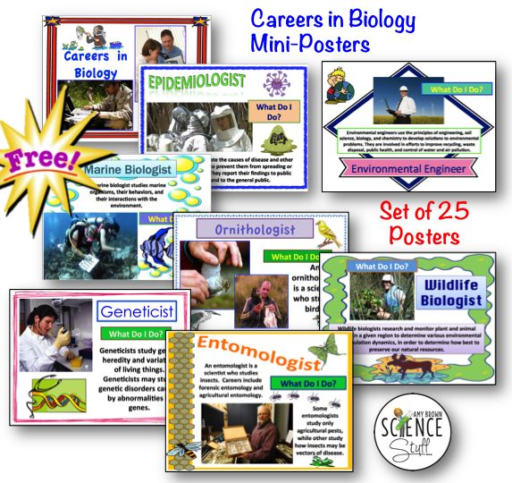 Quick and easy and it's FREE!! These are three words I love to hear. This is a set of 25 mini-posters, each describing a different career in the field of biology. Perfect for a science classroom bulletin board or hallway wall display.