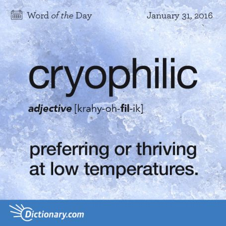 """Oh, I found the word to describe my delight of being nearly frozen all of the time. More cold please.""~Sethaka."