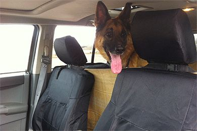 Coverking Ballistic Seat Covers - Best Price on Cover King Canvas Seat Cover
