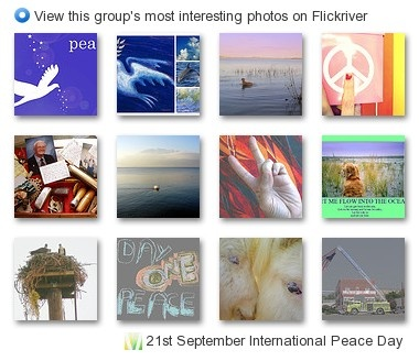Pictures from Flickr and PowerPoints backgrounds
