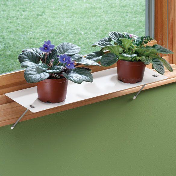 Plant Shelves, Indoor Plant