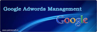 Google Adwords Company India @ http://www.newstep.in/web_designing.html