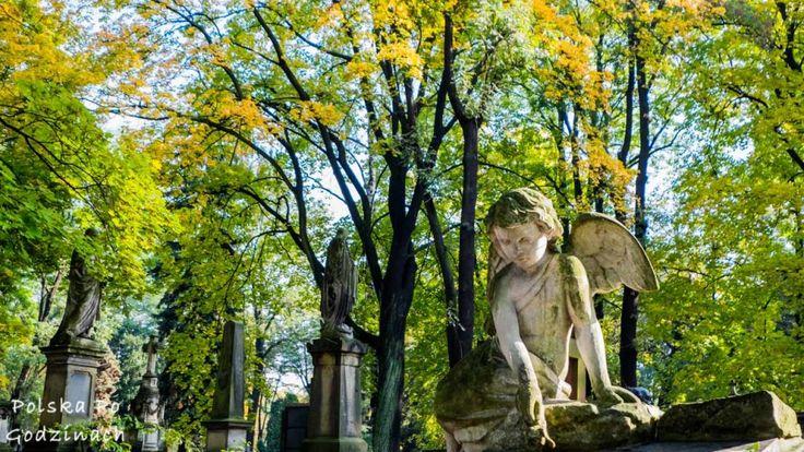 Zwiedzanie starych cmentarzy jest czasem ostatnim punktem na liście turysty, przy natłoku jakże ciekawszych miejsc i ograniczonym czasie. Warto zrobić jednak wyjątek i udać się na spacer w piękny jesienny dzień na jedną ze starych polskich nekropoli.