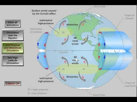 ▶ Global Atmospheric Circulation - YouTube. Weather. Science. Outdoor Education