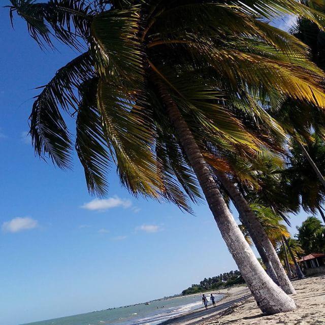 Com pouco mais de 12 mil habitantes, Paripueira (AL) tem praias lindíssimas que na maré baixa, praticamente pode se caminhar quilômetros para dentro do mar. Vale a visita!  Foto: @soolnascimento