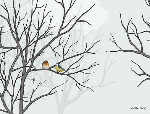 michalovic / Vtáčí les - zima