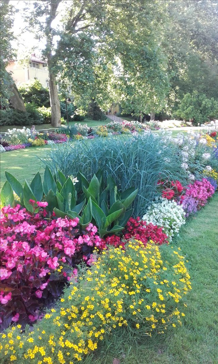 Flowers Beautifull... Yellow, pink, white,ruby, purple etc.
