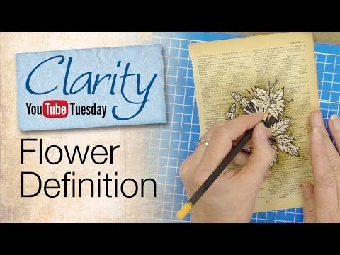 Barbara Gray's Blog. One Day at a Time.: YouTube Tuesday - Dictionary Definition of a Flower!