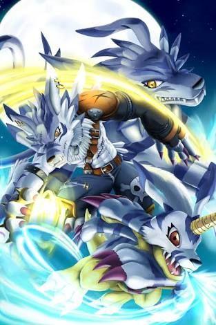 Digimon Dragon's Shadow: Gabumon Digivolução