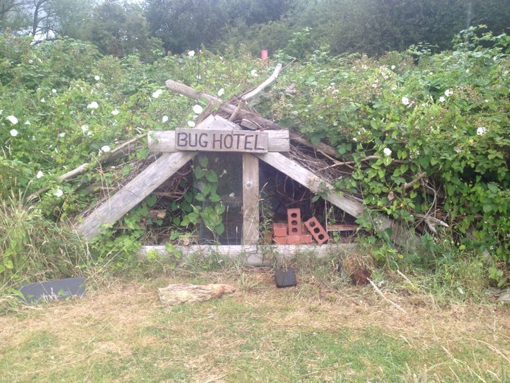 An impressive bug hotel at Redbridge Lakes. Could be fitted in any space