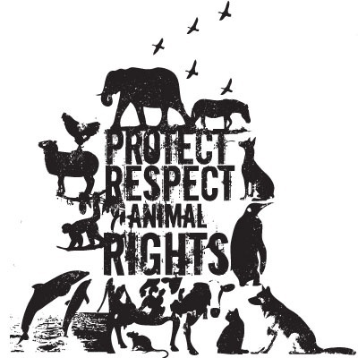 the debate over the issue of animal rights Please enter your library id, barcode, or other id:  password sign in.