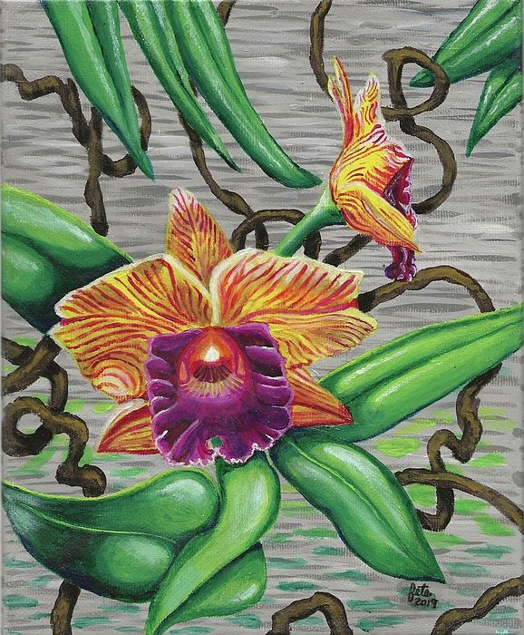 Orchids By Stefanie Boyd Orchids Painting Orchids Artwork