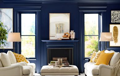 Sherwin Williams Paints - Absolutely the BEST paint I have ever used. I'm dedicated to using their paint and will drive miles to their store because it really is that divine to paint with.