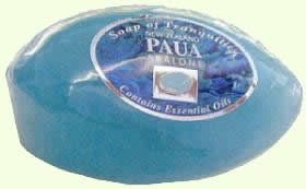 New Zealand Paua Abalone Soap