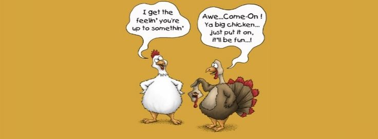 pictures of thanksgiving to share on facebook | people to share these free funny thanksgiving pictures for facebook