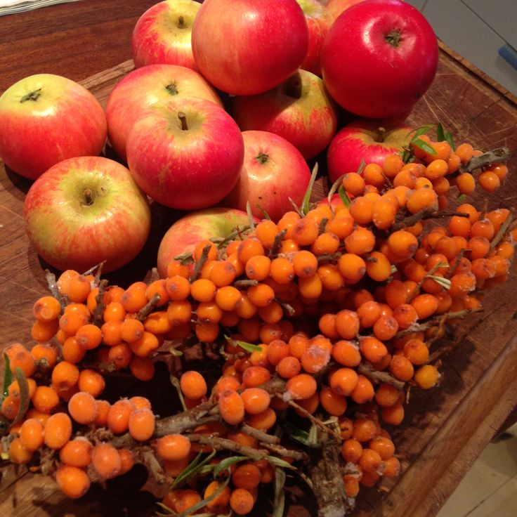 Nem opskrift på hjemmelavet havtorn-æble marmelade. Havtornens syrlighed og æblernes sødme er en perfekt kombination, der giver en god marmelade.