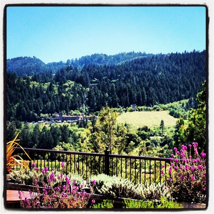 "Sterling Winery | Napa Valley- what a view!  across to the winery on the ""ski lift"""