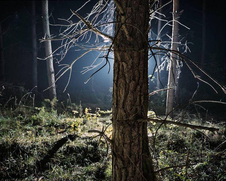 Szymon Rogiński, fotografia z cyklu UFO, 2007., fot. dzięki uprzejmości artysty - photo 2