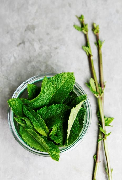 Mint is an Ancient Healing Food  enjoyed for its wonderful aroma, its great taste, and its healing power. Add to meals or drink as a tea to aid in digestion, cleanse breath, improve mood and to aid in sleep among many other medicinal benefits.