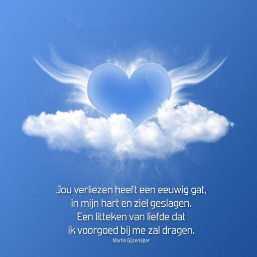 Jou verliezen heeft een eeuwig gat, in mijn hart en ziel geslagen. Een litteken van liefde dat, ik voorgoed bij me zal dragen.  www.dichtgedachten.nl