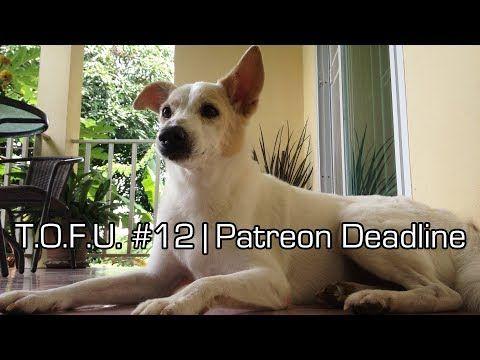 T.O.F.U. #12 | Patreon Deadline - YouTube