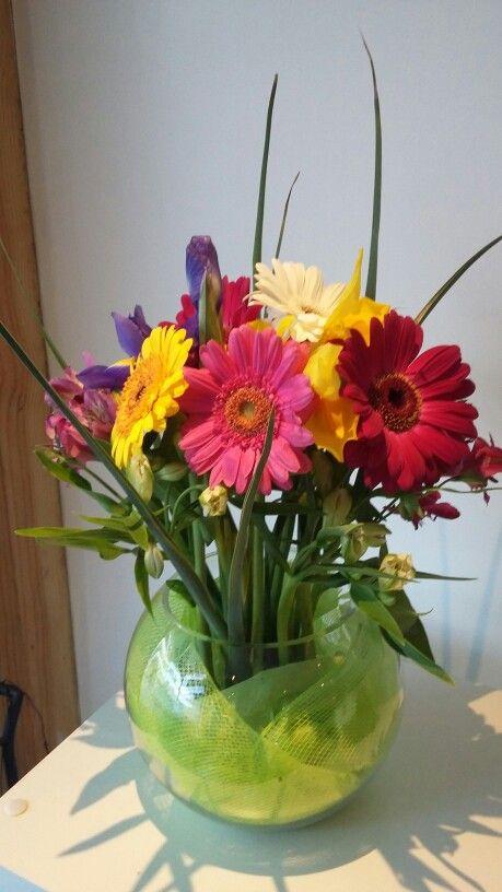 Iris astromerias gerveras