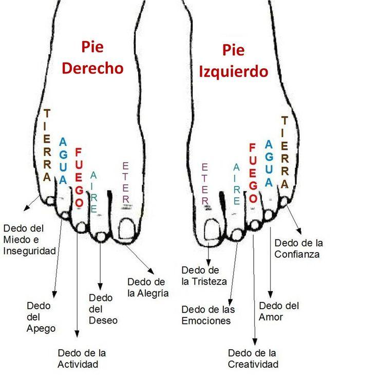 Universo de Luz y Amor: Los pies reflejo de la personalidad