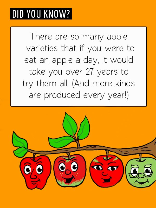 Fun Food Fact: Did you know there are more than 10,000 varieties of apples?