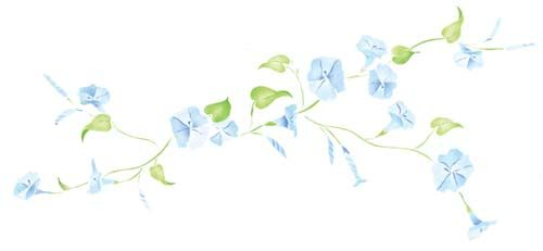Morning Glory Vine Stencils : Best images about stencils on pinterest vinyl wall