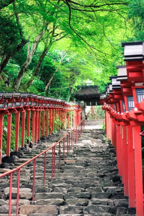 Kyoto, Japan. stay near a tube station and you can get anywhere in the city easily