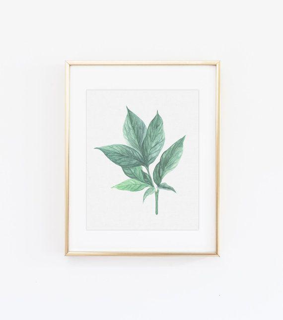 Botanical print  Green leaf print  Botanical print by kiwiNberries